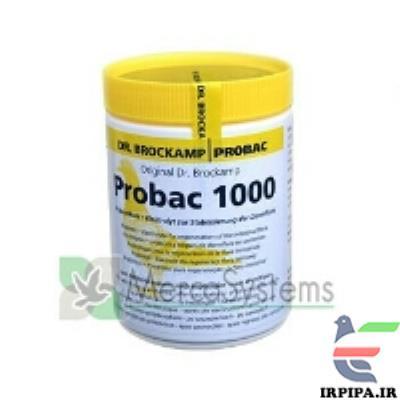 http://www.irpipa.ir/imgarticle/86400000360000010006461.png