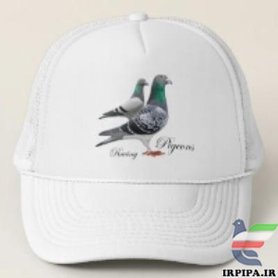 http://www.irpipa.ir/imgarticle/86400000360000010007576.png